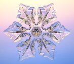 Visit Caltech's snowflake lab to learn about the science behind snowflakes.